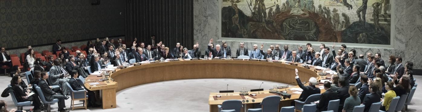 Danmark kandiderer til Sikkerhedsrådet