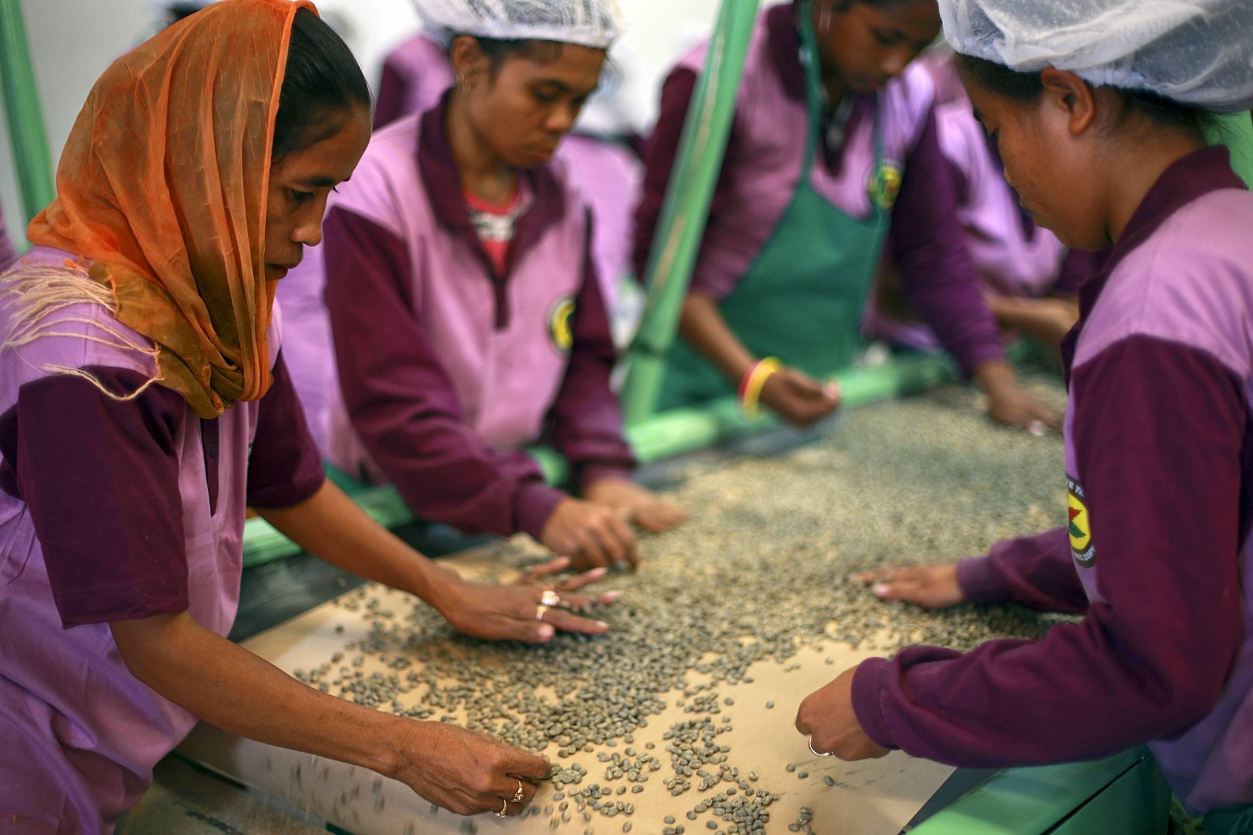 Den internationale dag for kooperativer