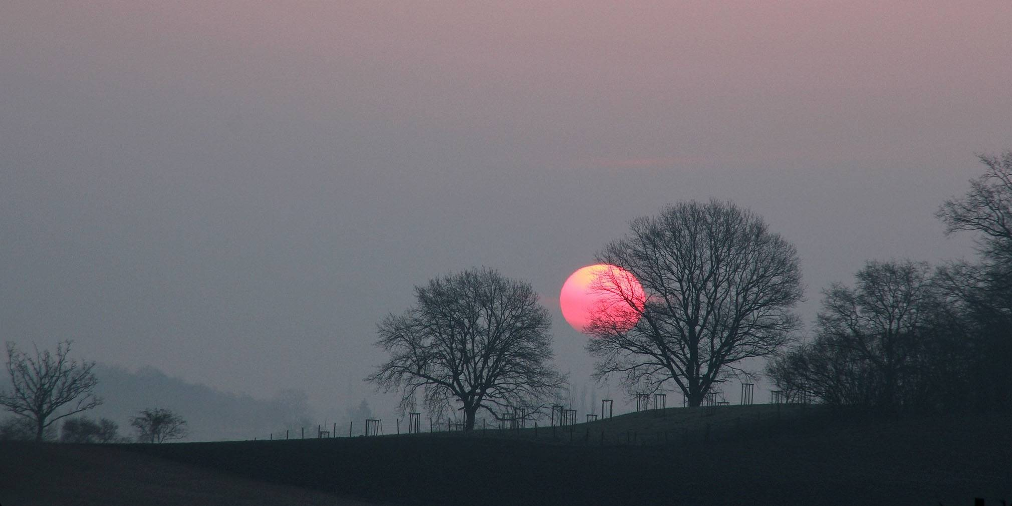 Den internationale dag for bevaring af ozonlaget