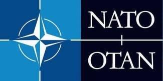 NATO er et eksempel på en mellemstatlig organisation. Det betyder, at NATO kan stilles for retten i en folkeretslig domstol.